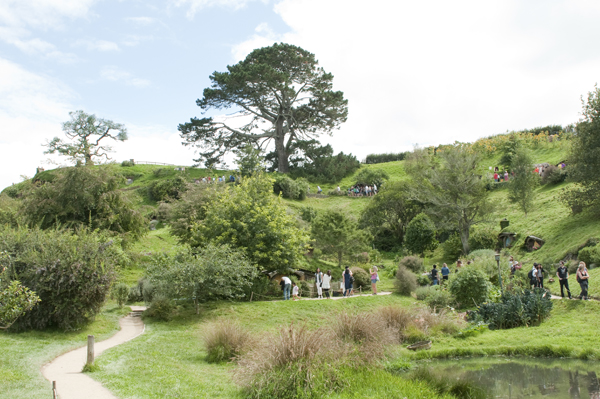 New-Zealand-Hobbiton-by-Ashley-Lynn-Photography (12)