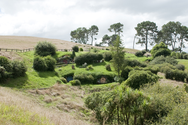New-Zealand-Hobbiton-by-Ashley-Lynn-Photography (14)