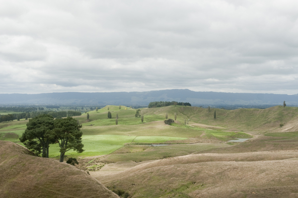 New-Zealand-Hobbiton-by-Ashley-Lynn-Photography (2)