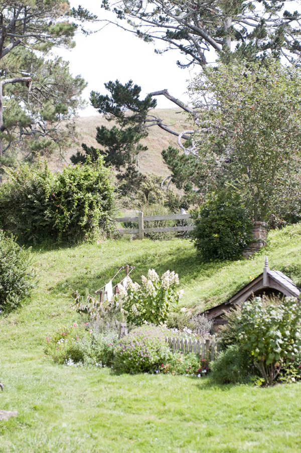 New-Zealand-The-Hobbit-Fence-Jump-by-Ashley-Lynn-Photography (8)