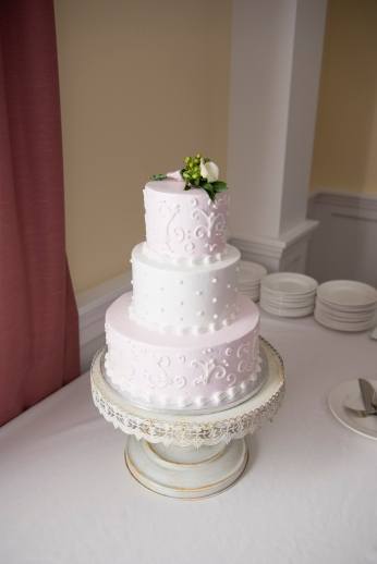 The_Cake_Shop_Beavercreek_Ohio_Wedding_Cake_by_Ashley_Lynn_Photography (36)