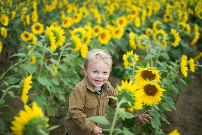 Family-Session-Sunflower-Field-by-Ashley-Lynn-Photography-1022